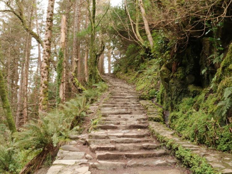 road-trip-irlande-randonnee-parc