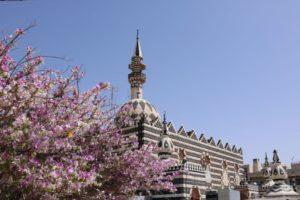 Un circuit halal en Jordanie. Mosquée Abou Darwish à Amman